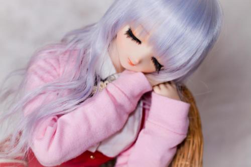 nemu-faceup-6331